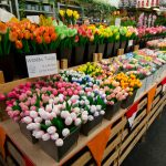Цветы на Рижском рынке