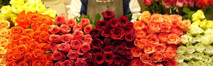 Розы на Рижском рынке
