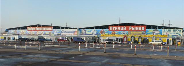 Птичий рынок на Садоводе в Москве